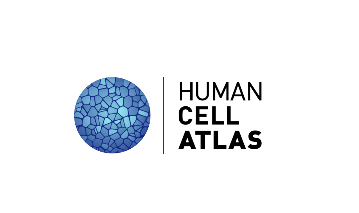 Human_Cell_Atlas_Logo.PNG