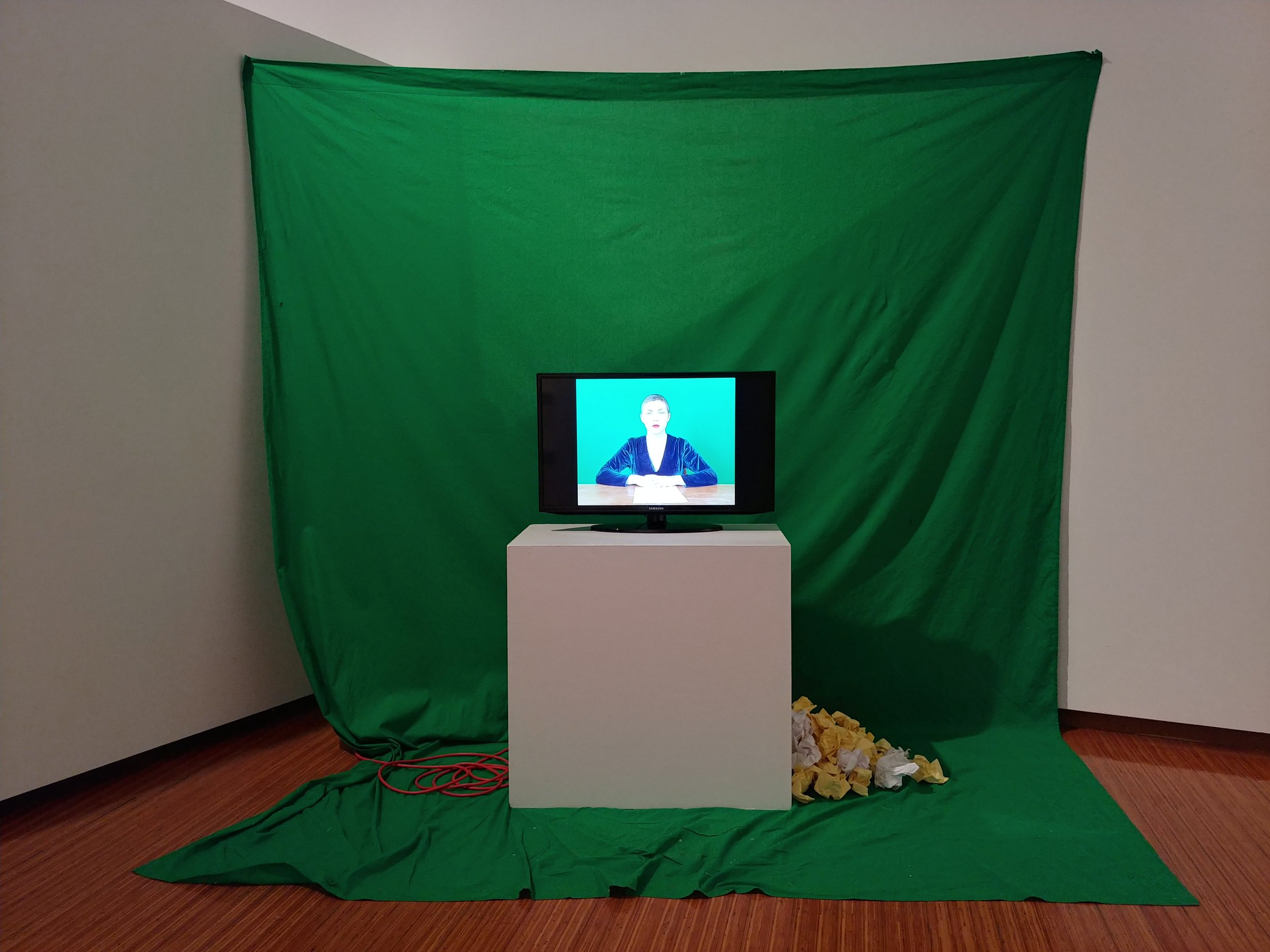 Install at MFA thesis show