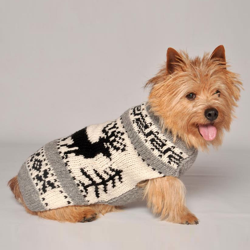 reindeer-shawl-dog-sweater-by-chilly-dog.jpg