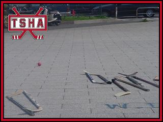 tsha0021.jpg