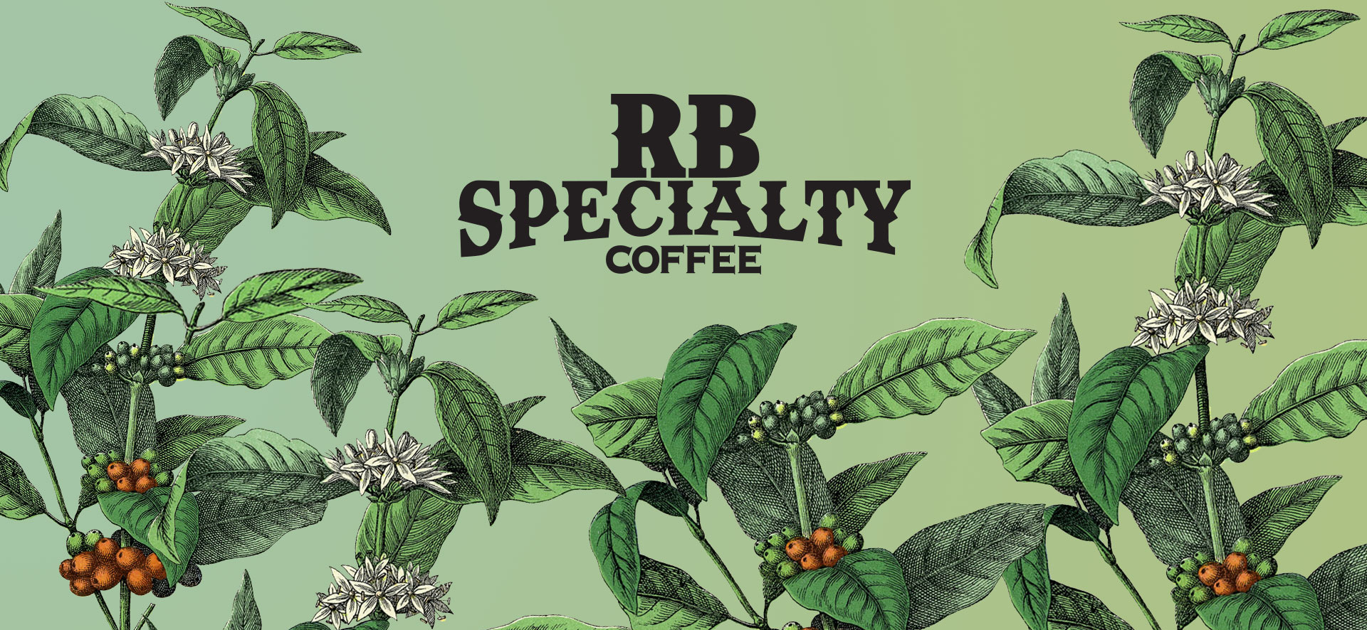 Branding, packaging and digital marketing for a coffee roaster in South Florida