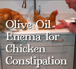 Olive-Oil-Enema.jpg