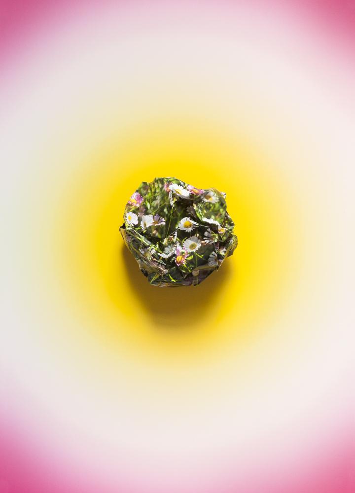 Flowerball - Daisy