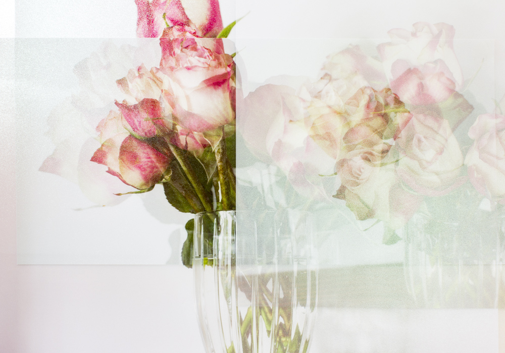 Still Life with Roses #3