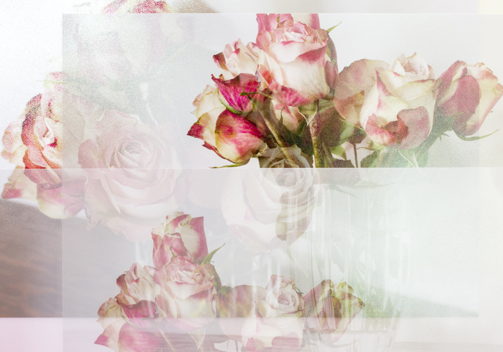 Still Life with Roses #2
