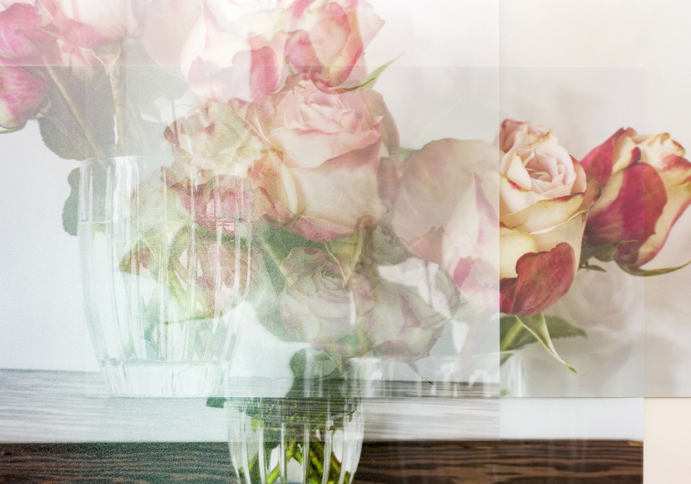 Still Life with Roses #5