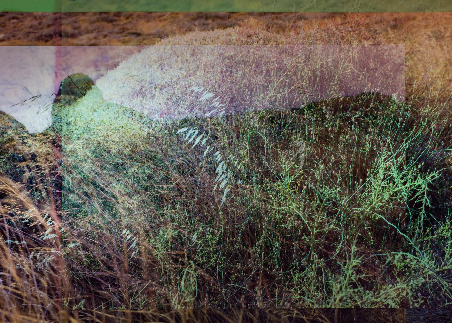 Diffraction Landscape #1649