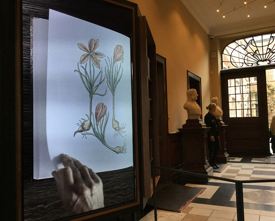 Plantin-Moretus museo Antwerpenissä on hienostuneesti digitalisoitu kaupunkipalatsi, jossa sijaitsi koti ja kirjapaino. Kuvat: Eeva Kyllönen