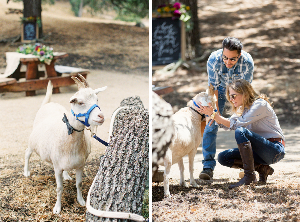 06 Santa Ynez Engagement Photos at Refugio Ranch.JPG