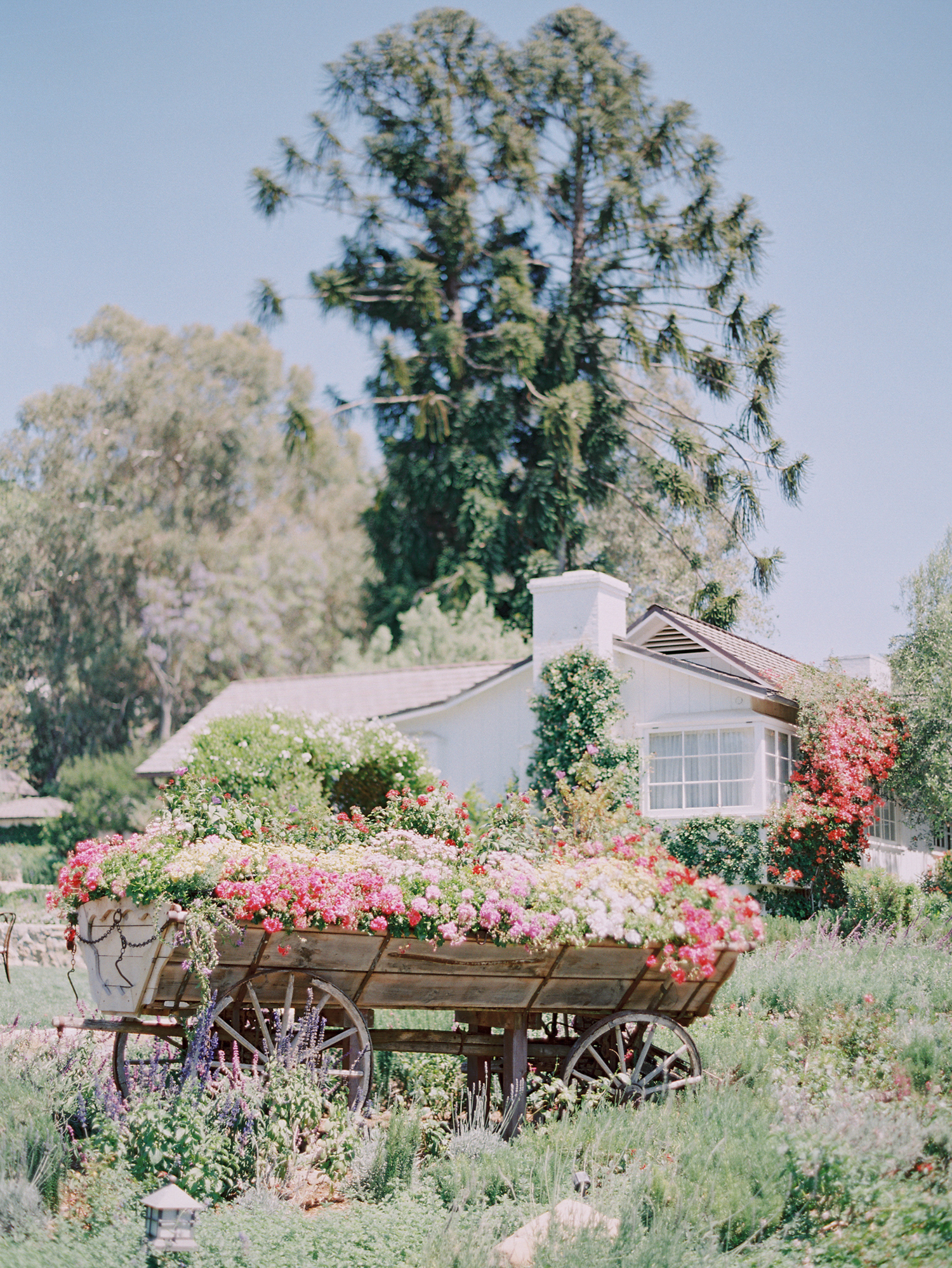 07 San Ysidro Ranch Wedding Planned Joy Proctor.JPG