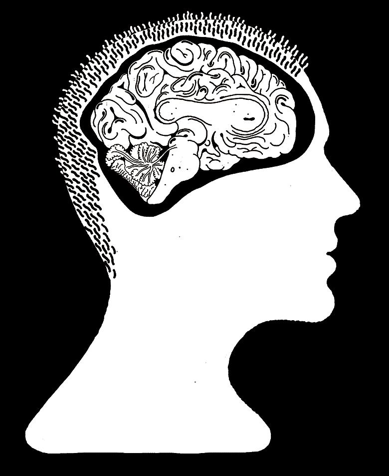 Hjerne-forside-print.jpg