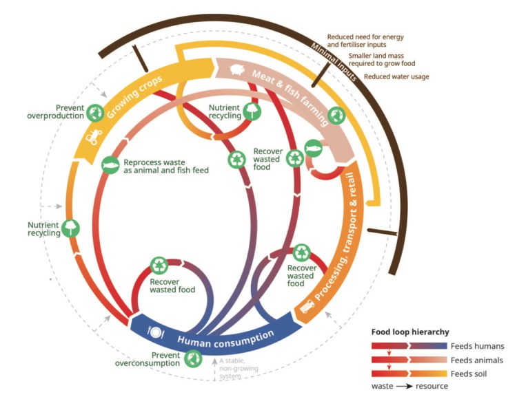 Feedback's vision for a circular food loop.