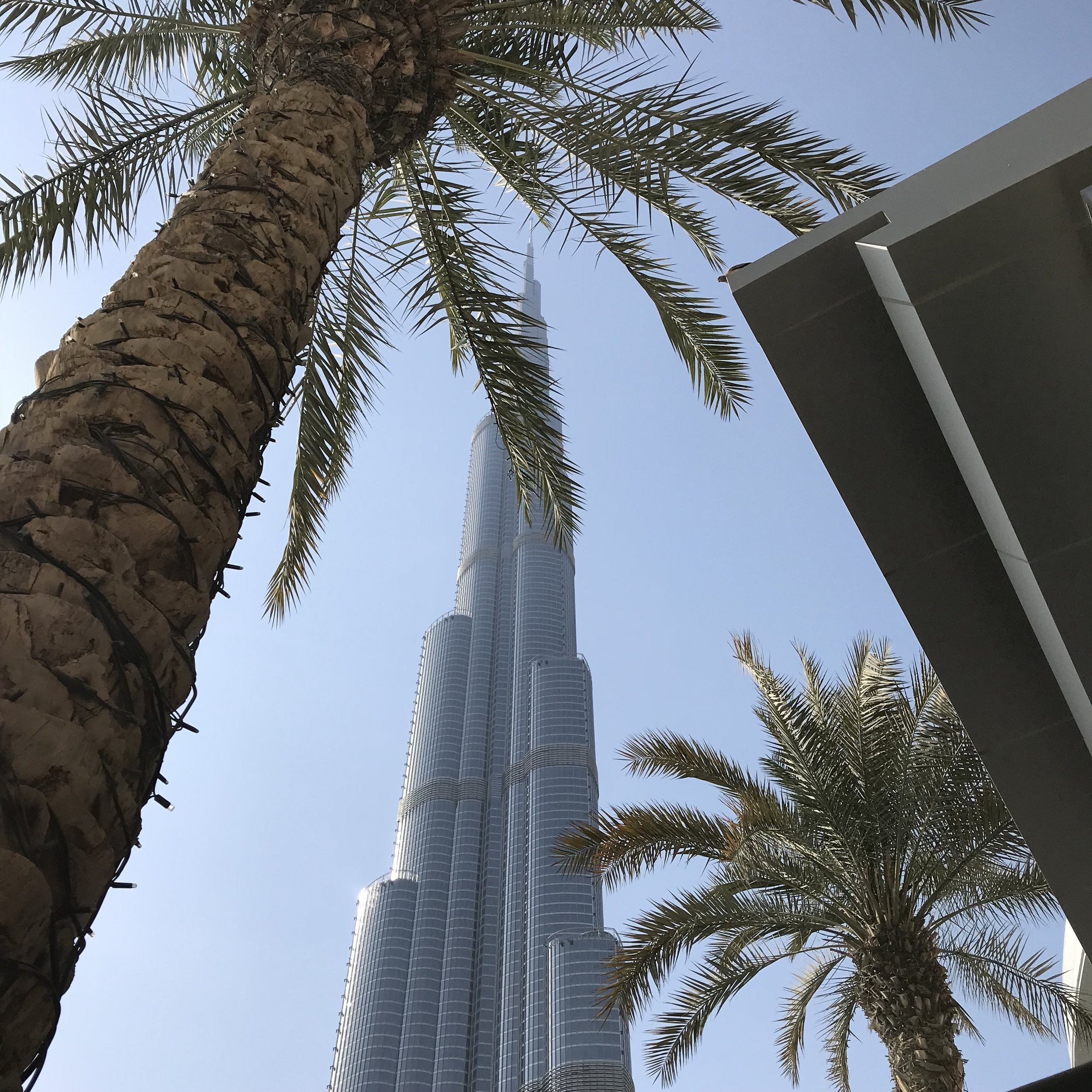 The Burj Khalifa, currently the world's tallest building, as seen from one of the Dubai mall's outdoor restaurants.