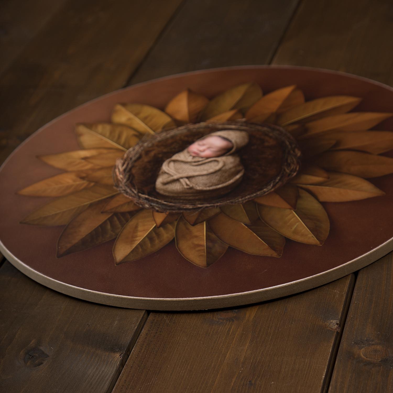 Photowood circular