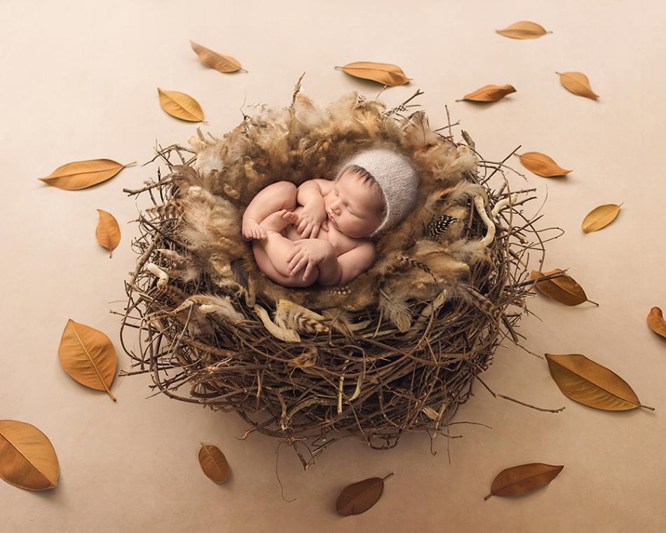 newborn backlight.jpg