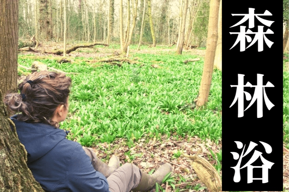 forest-bathing-event-page-thumbnail-min.jpg