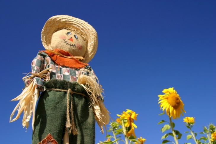 how-to-make-a-scarecrow-for-the-garden-nl-e1465825534260.jpg