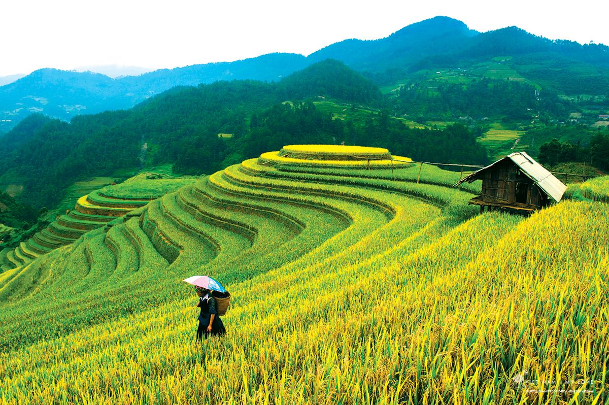 Vietnam I.jpg