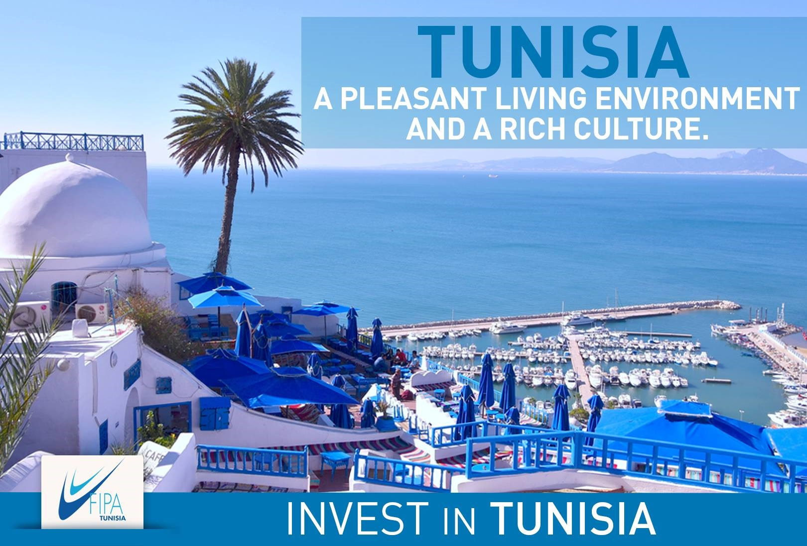 Tunisia II.jpg