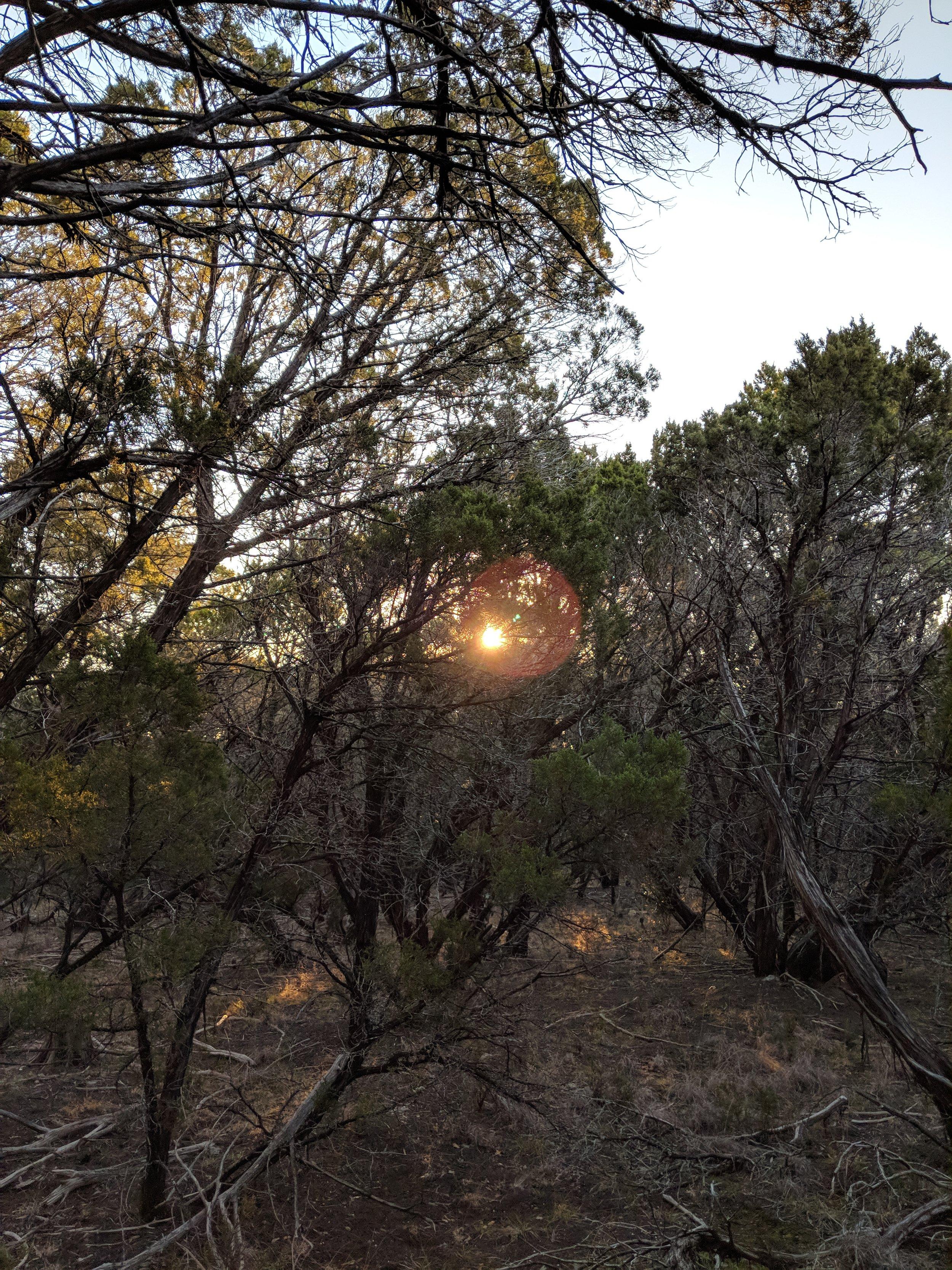 Found the Sun