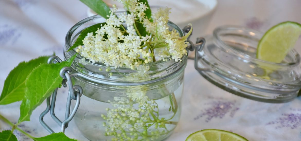 Elderflower pressé