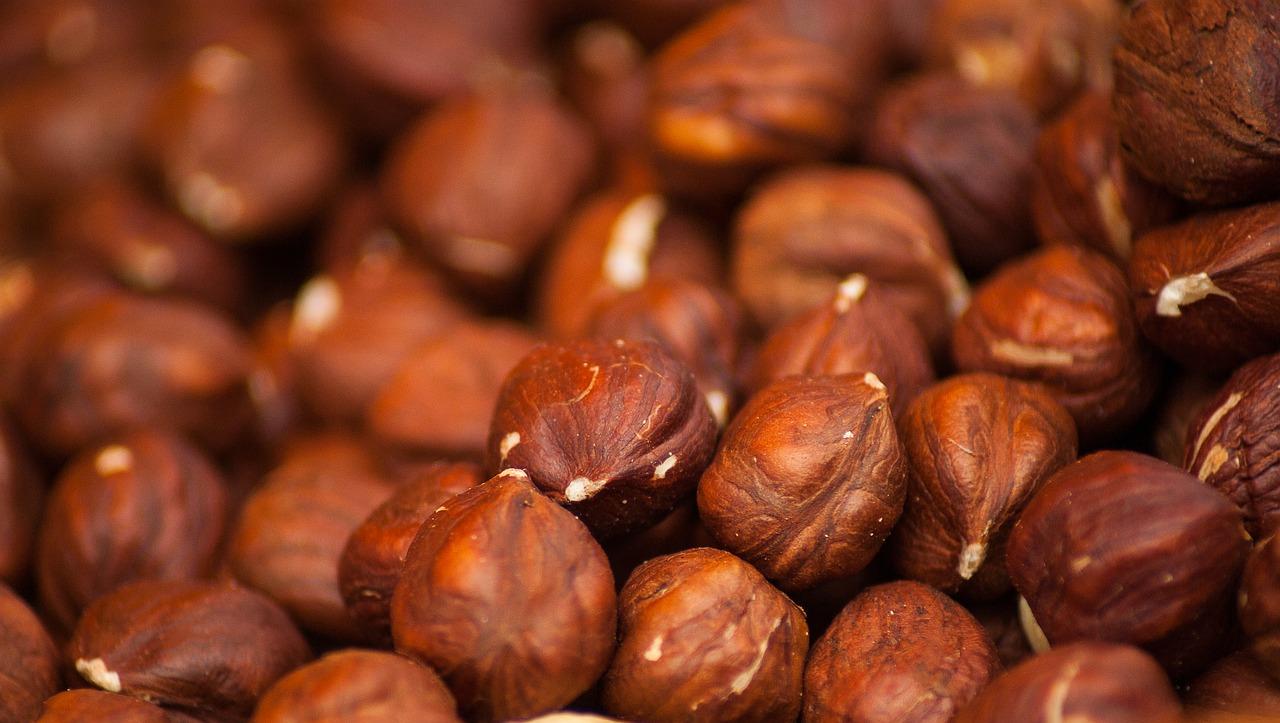 hazelnuts-1707601_1280.jpg