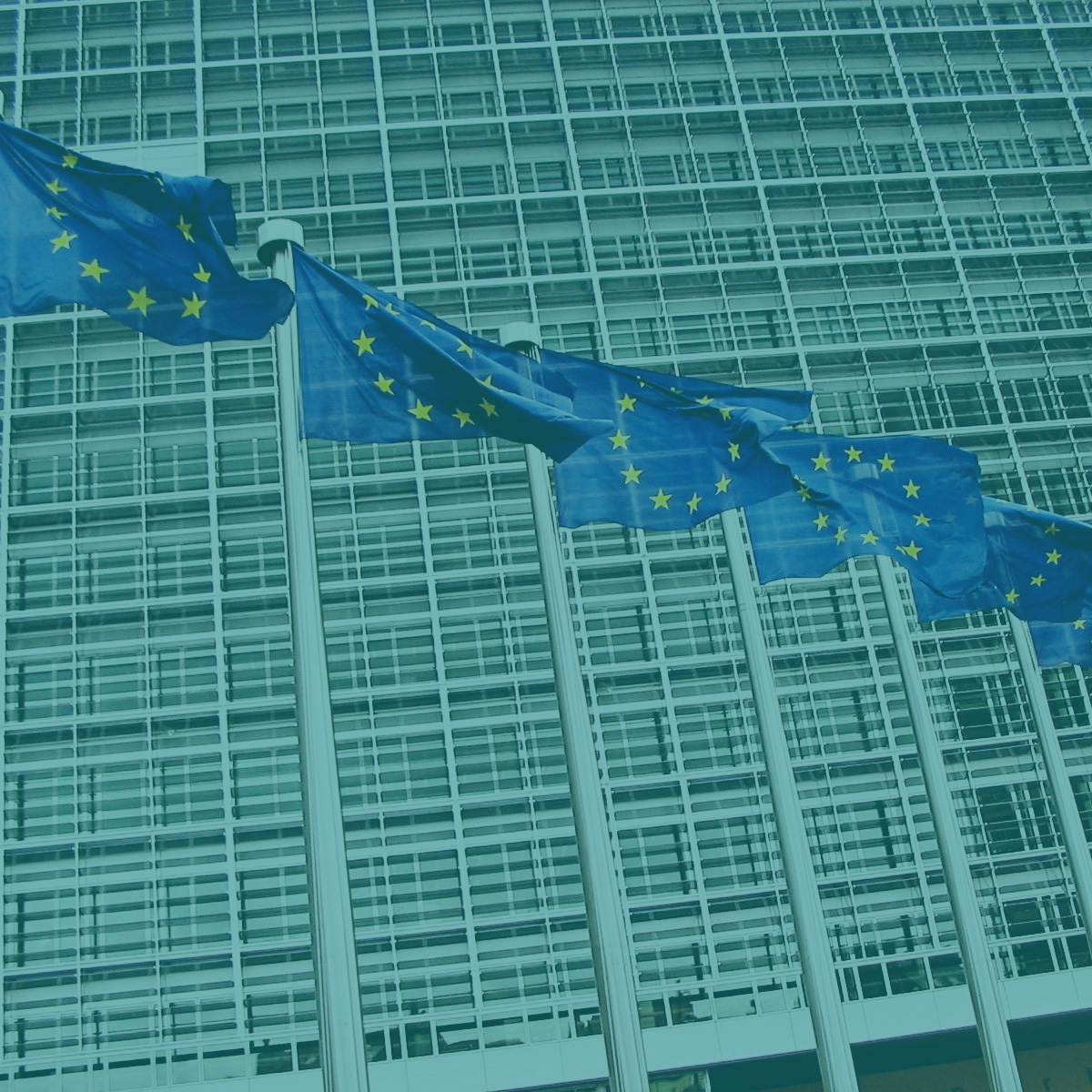 We are invigorating European leadership - In partnership with European Art of Hosting colleagues,we are building greater participation and innovation across the European Commission leadership.European Commission + The European Union Agency for Fundamental Rights (2010—)