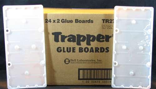 glue_board.jpg