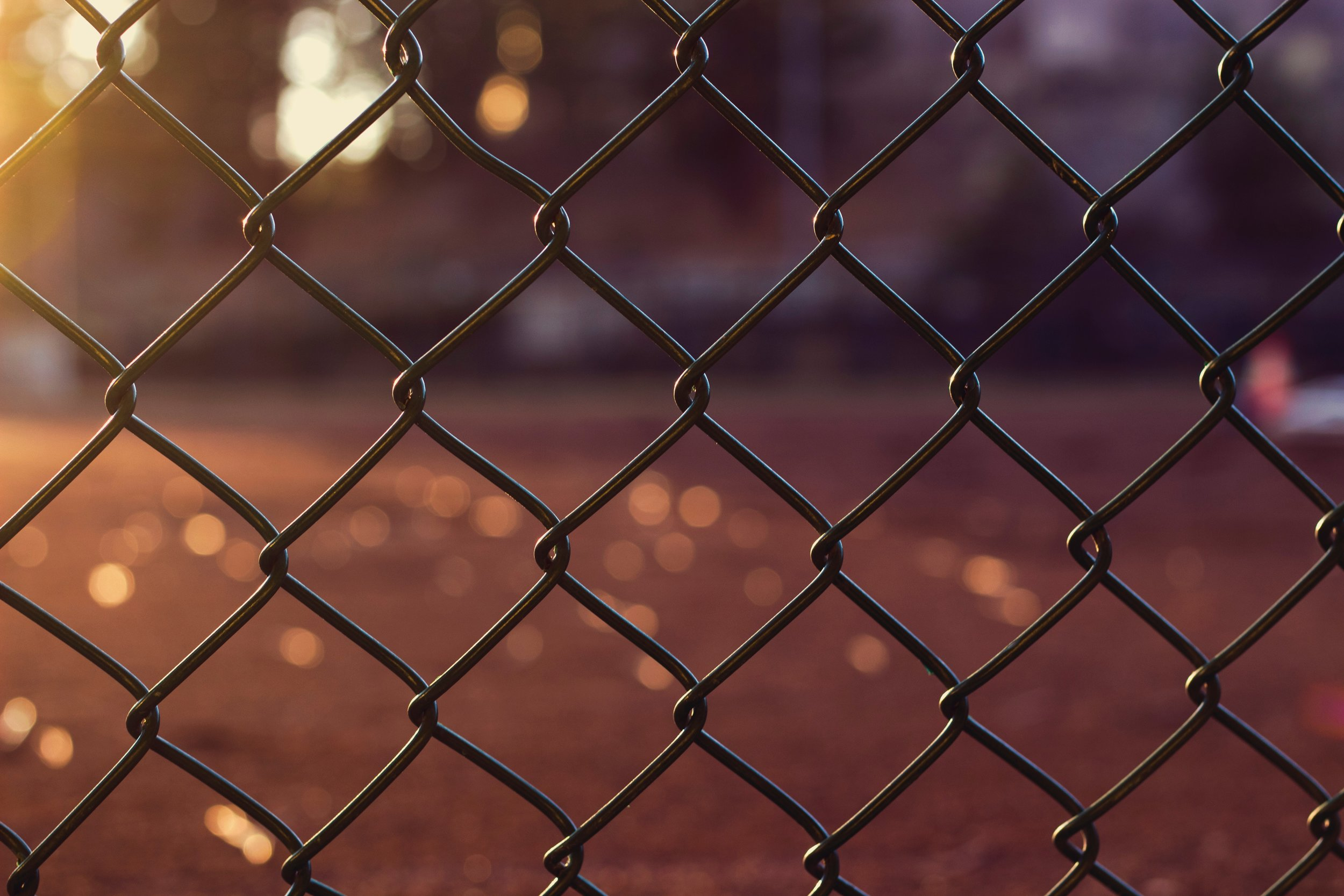 chain-link-fence-close-up-fence-897651.jpg