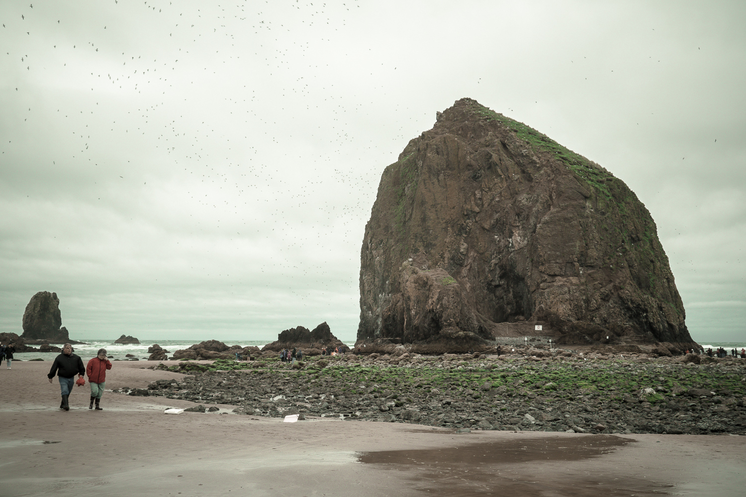 04-cannonbeach-4.jpg