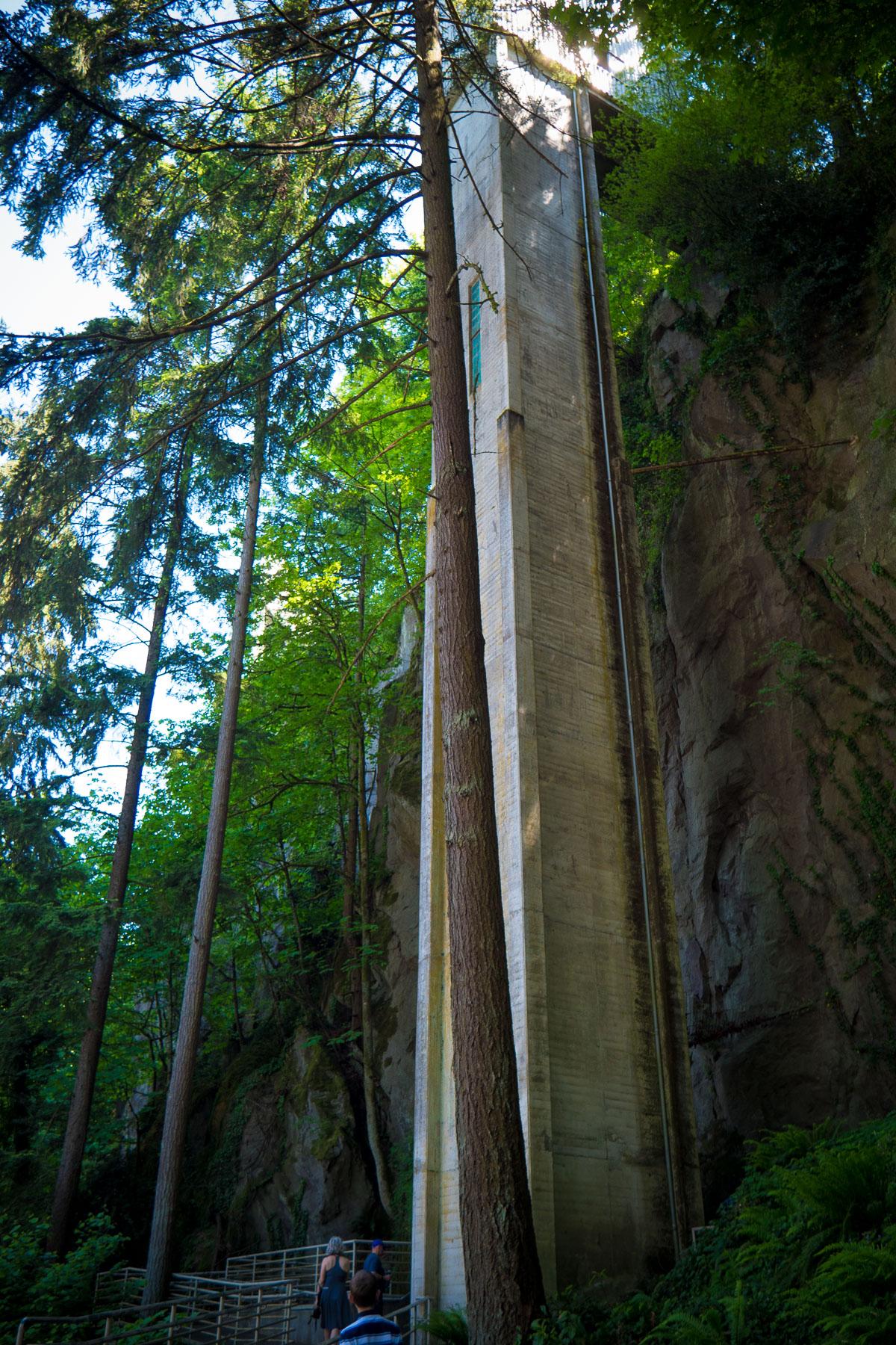 05-Trinity Grotto web-1.jpg
