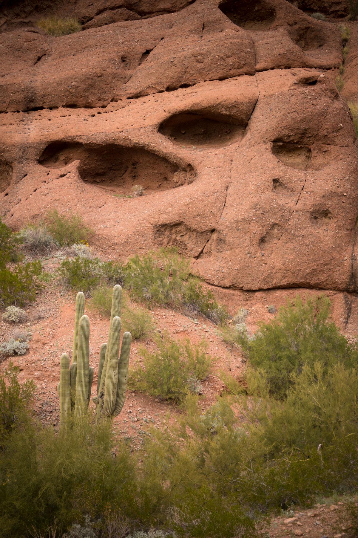 echo canyon-3.jpg