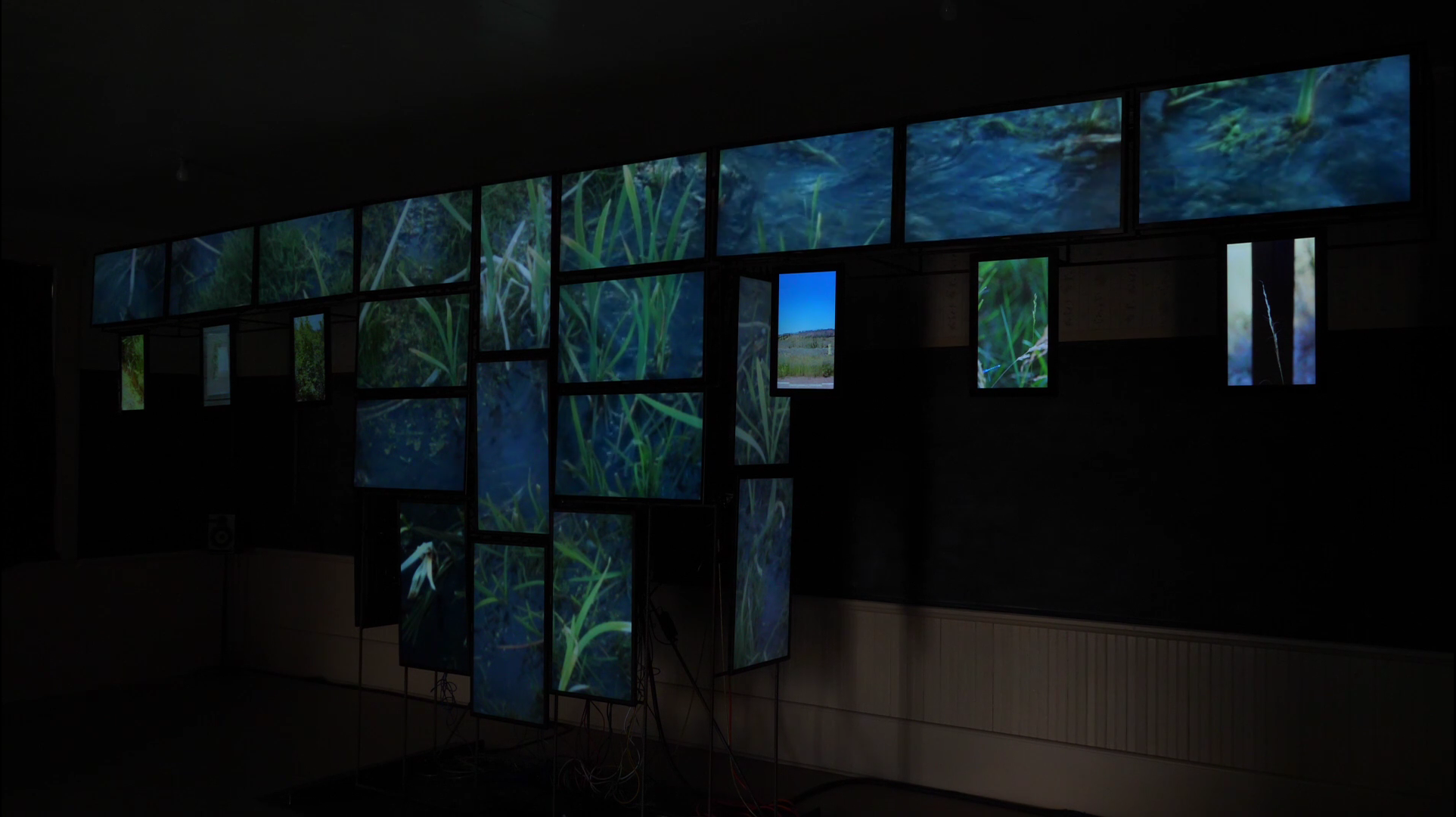 The video installation focused attention on the sight and sounds of place while confronting the colonization of the West.