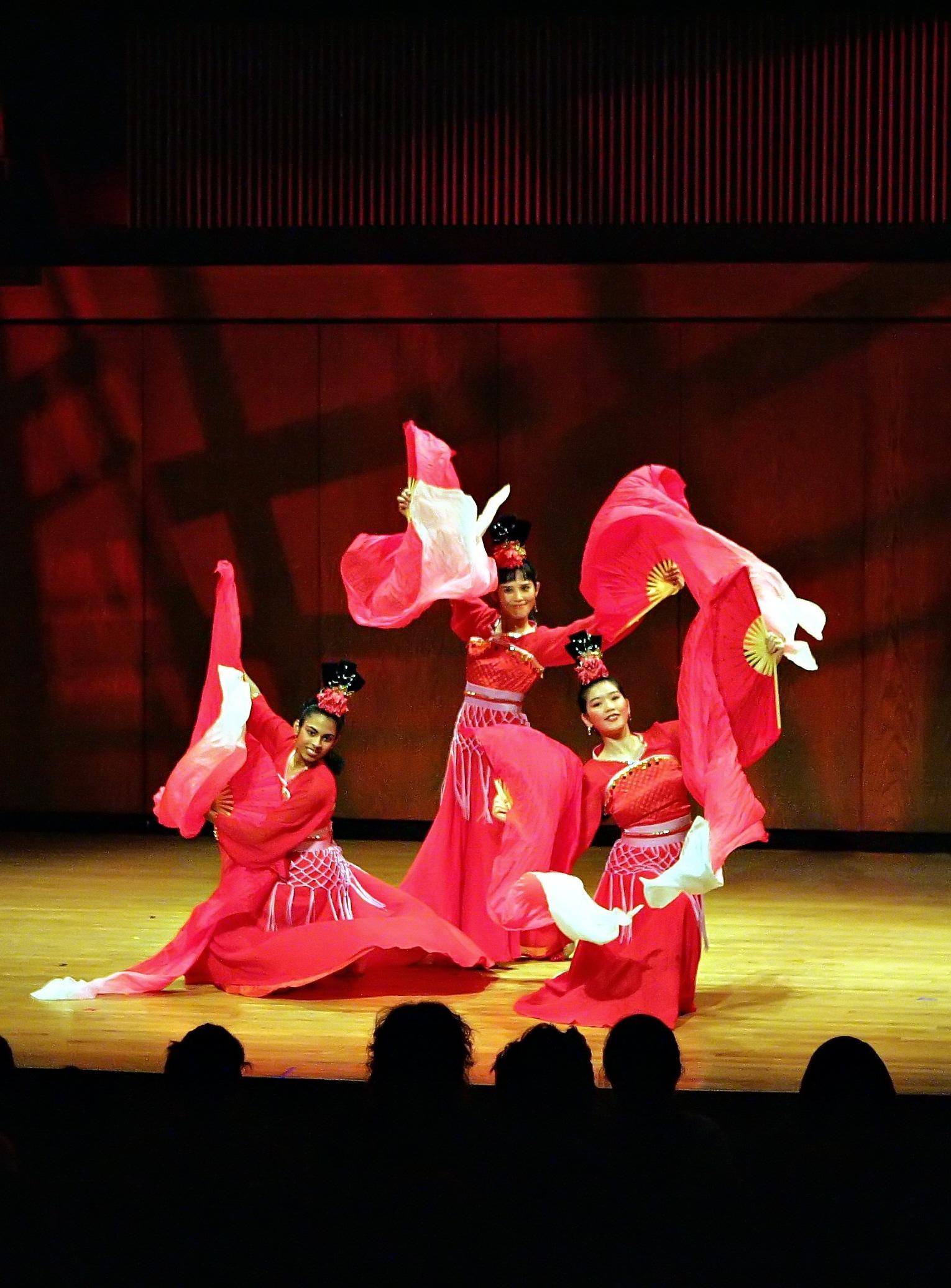 CAAN Chinese Dance photo.jpg