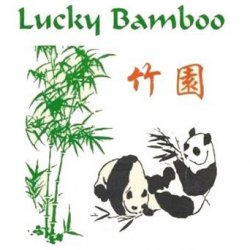 Lucky Bamboo log.jpg