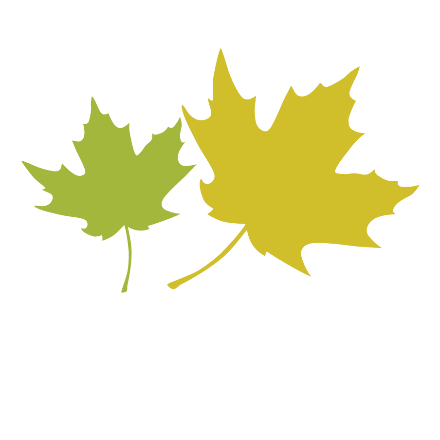Maple Leaf Leaves 2.png