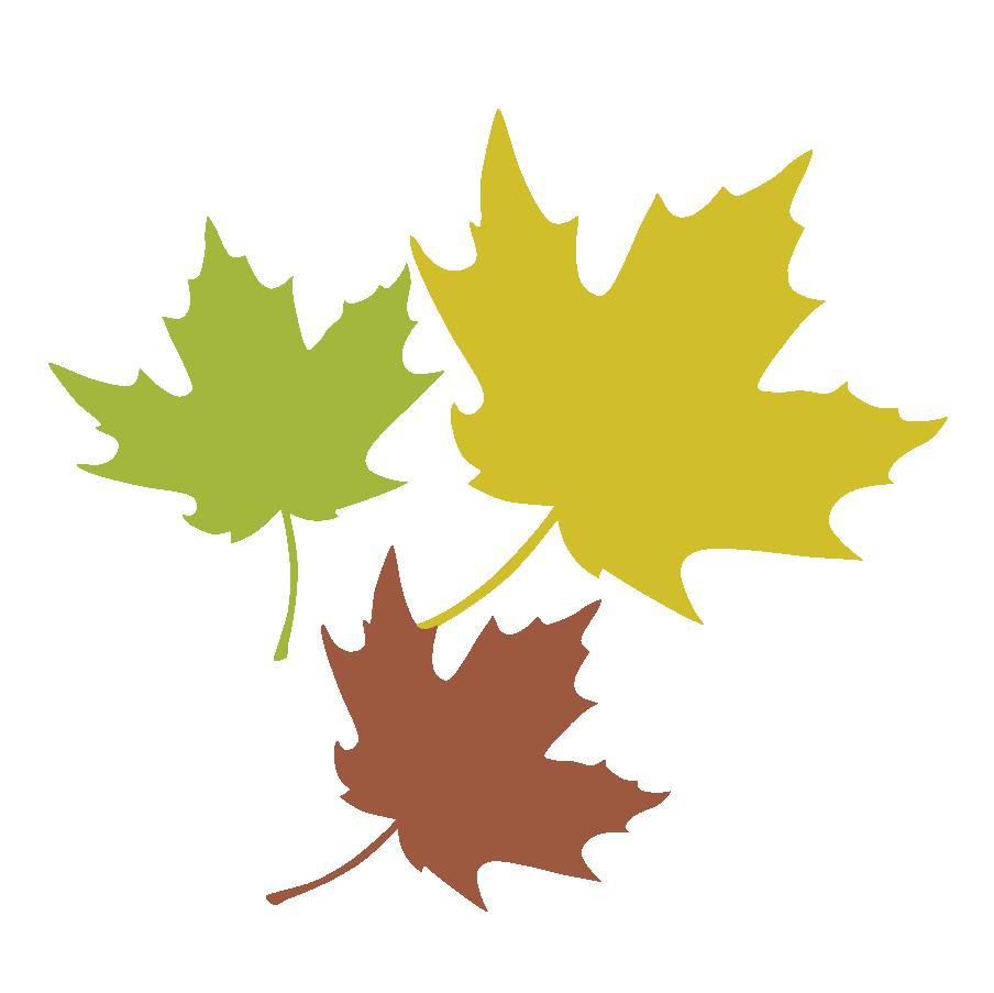 Maple Leaf Leaves 3.png