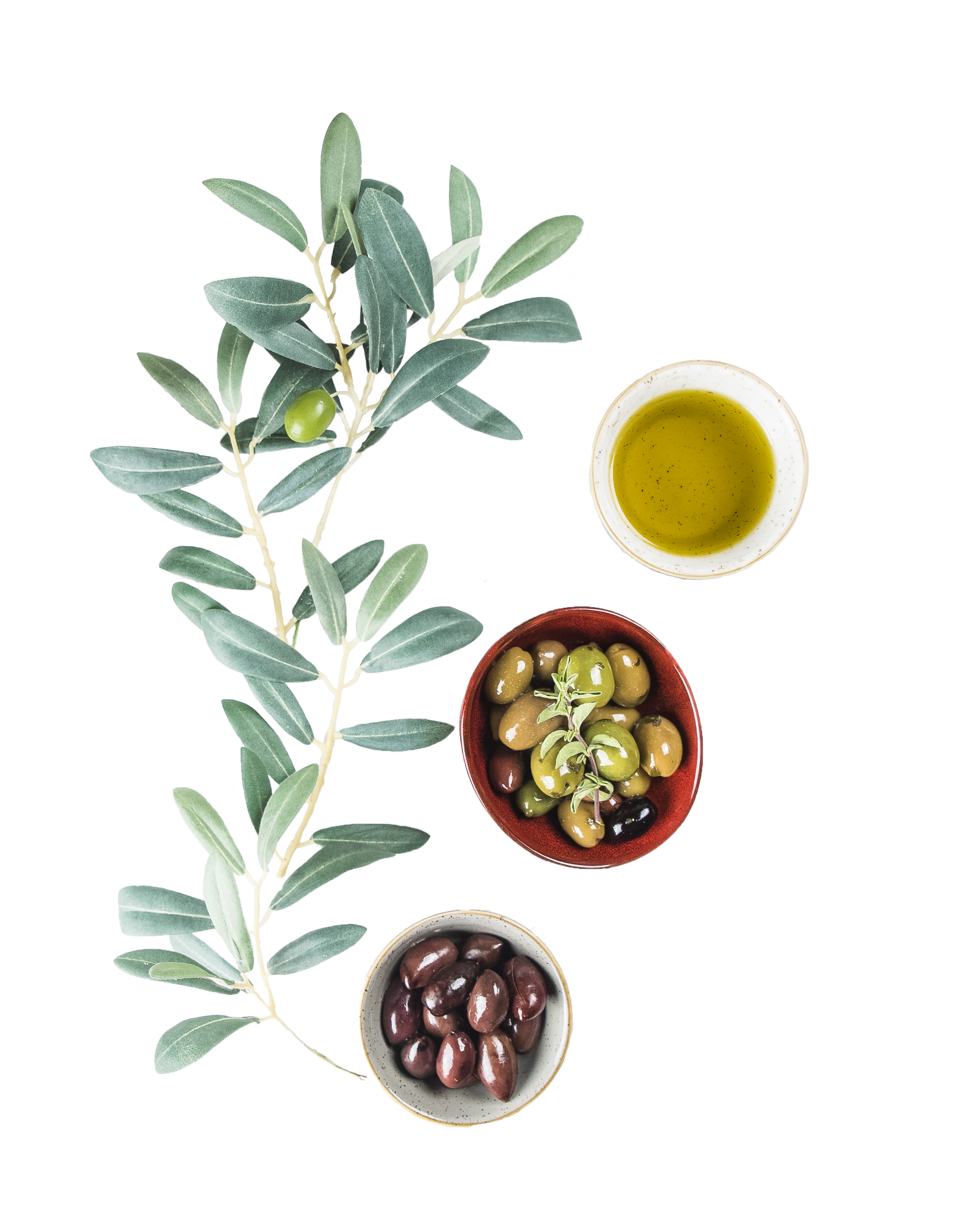 cutout olives 4.png