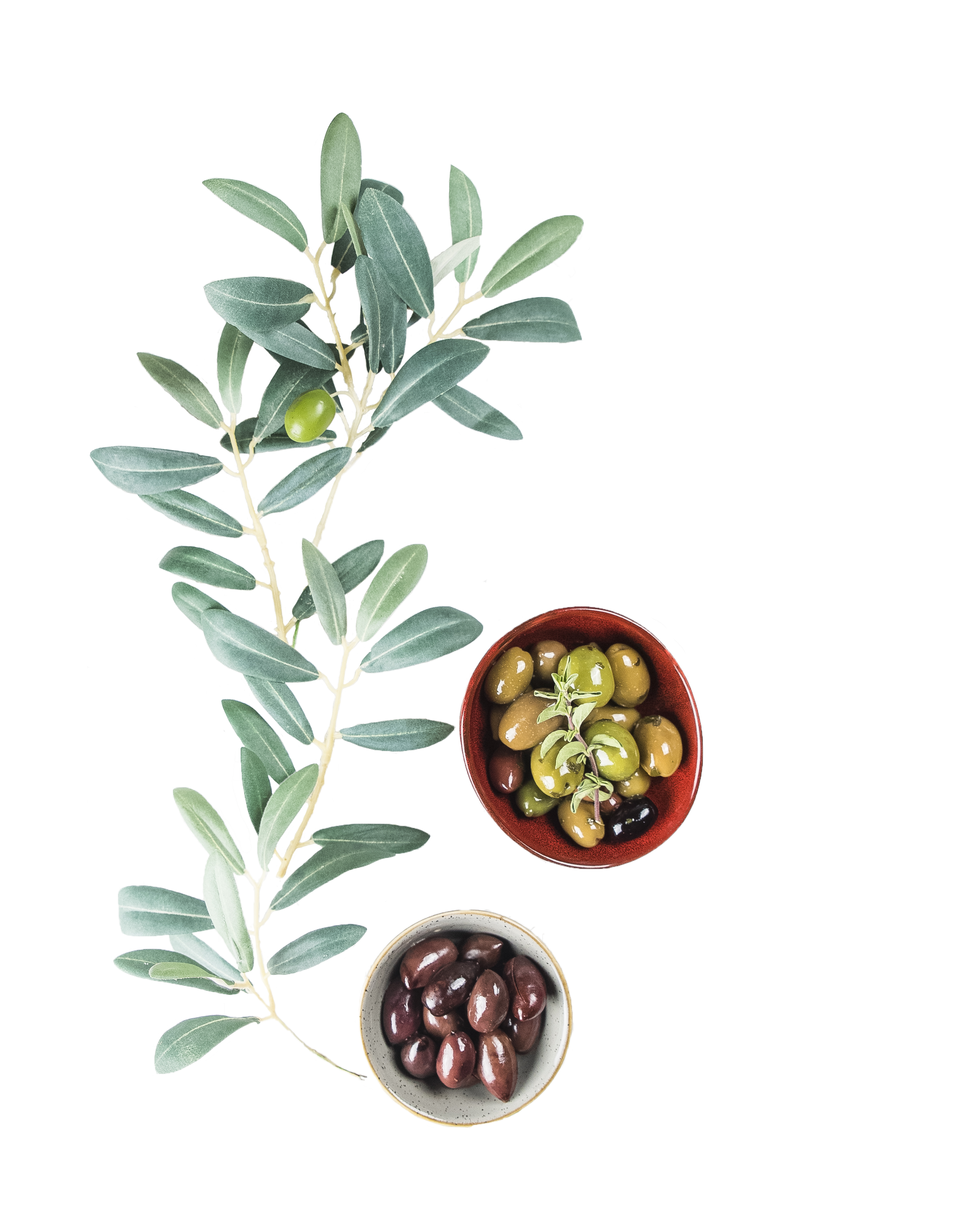 cutout olives 3.png