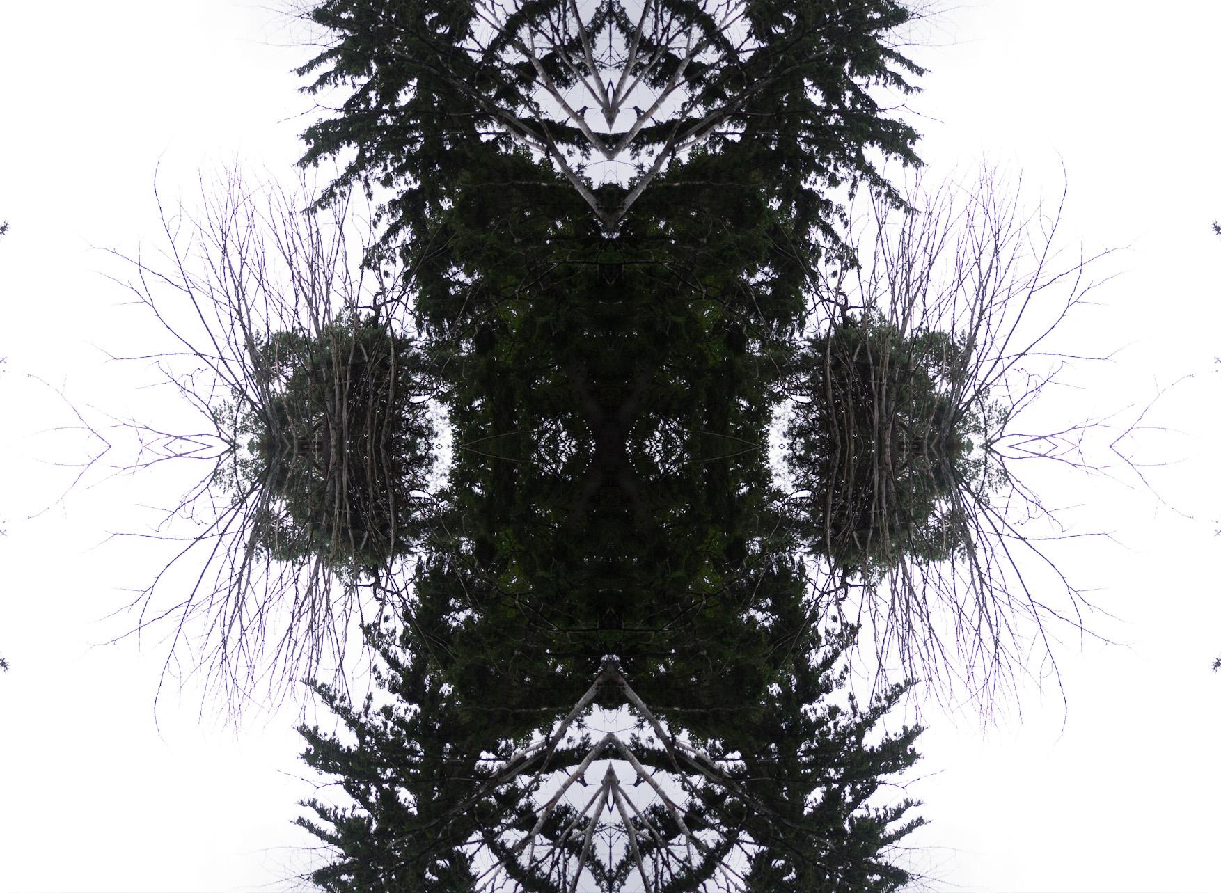 P1020651.jpg