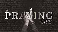 aprayinglife_title.png