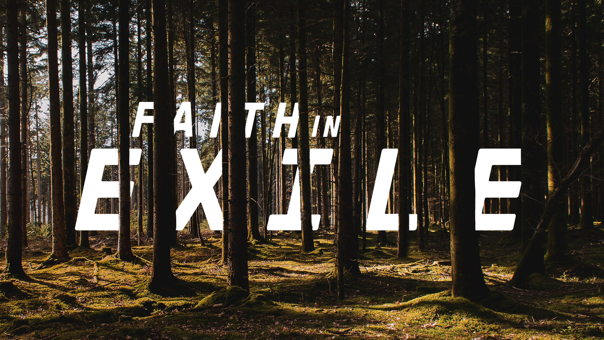 Faith in Exile 1080.jpg