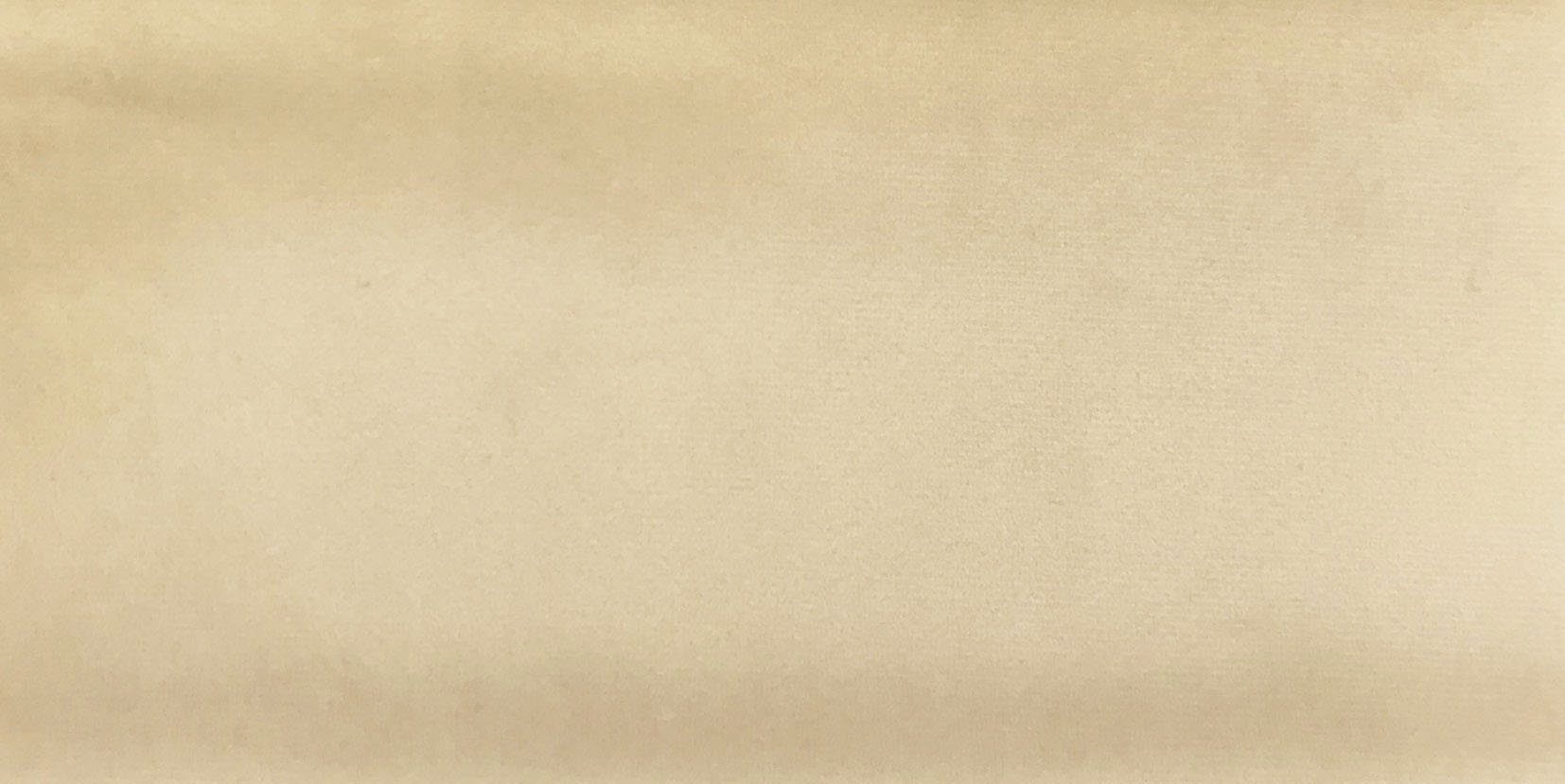 Vanilla • AMSTERDAM 04