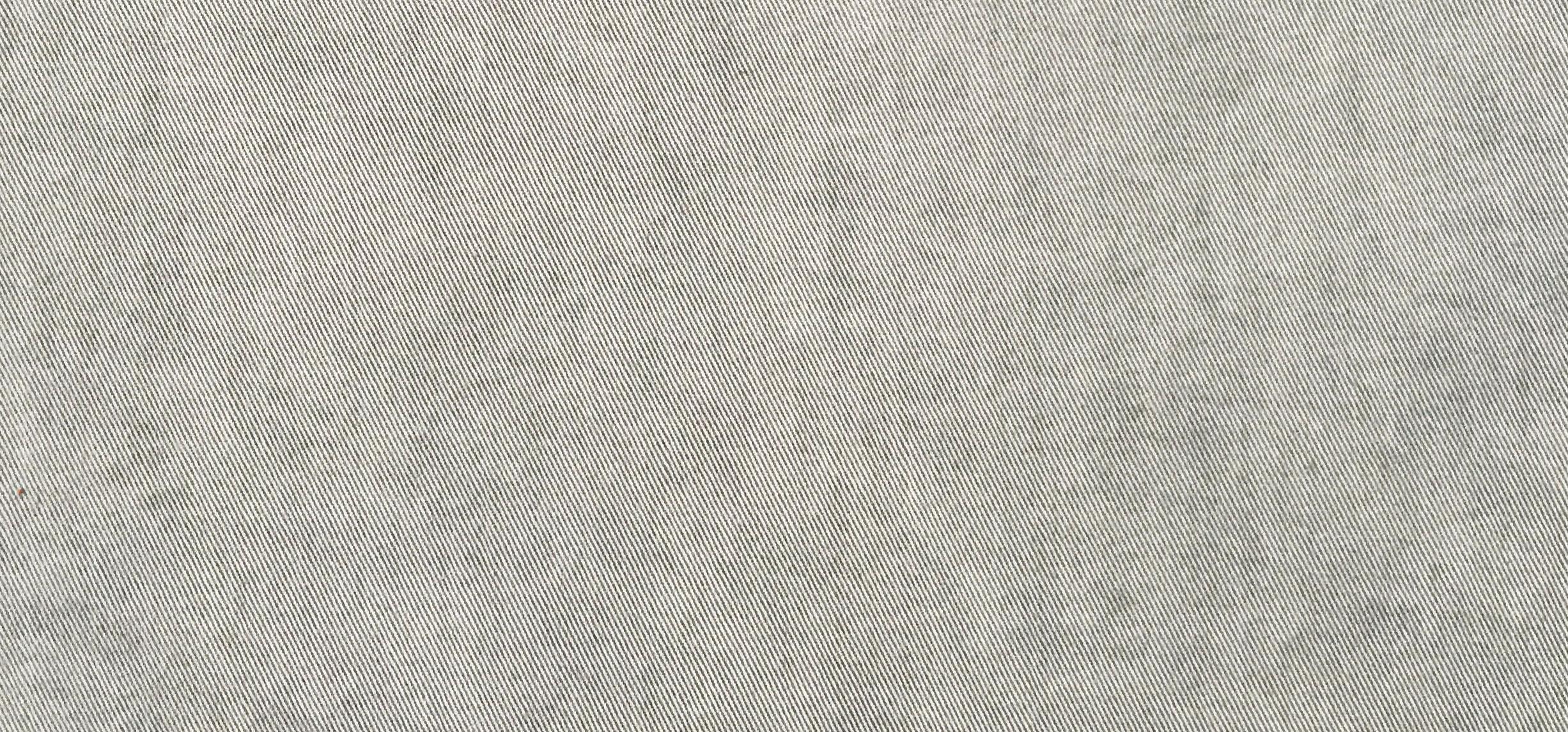 Pale Grey • TEXAS 02