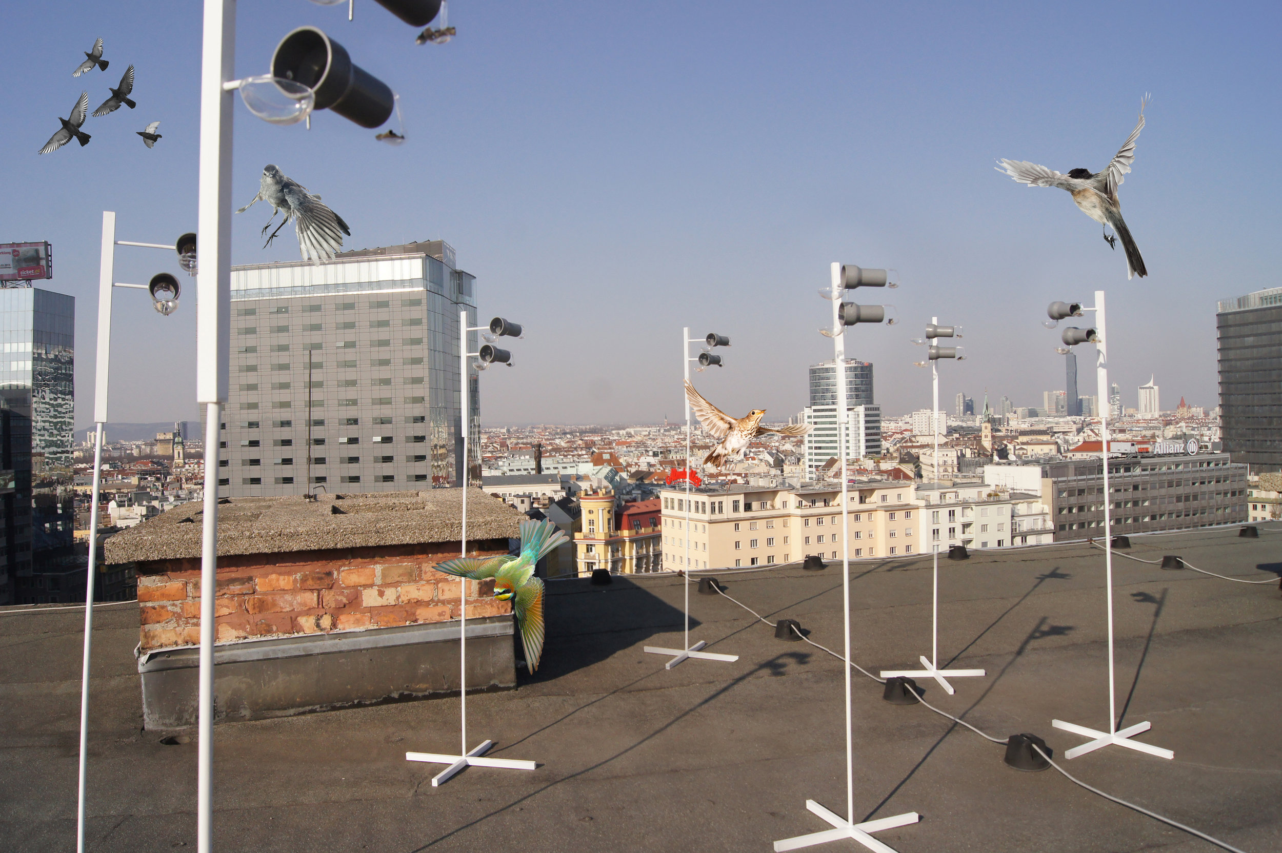 SENSING THE CITY - COLLECTING FECES OF MIGRATORY BIRDS TO DETECT DISEASES BEFORE THEY BREAK OUT