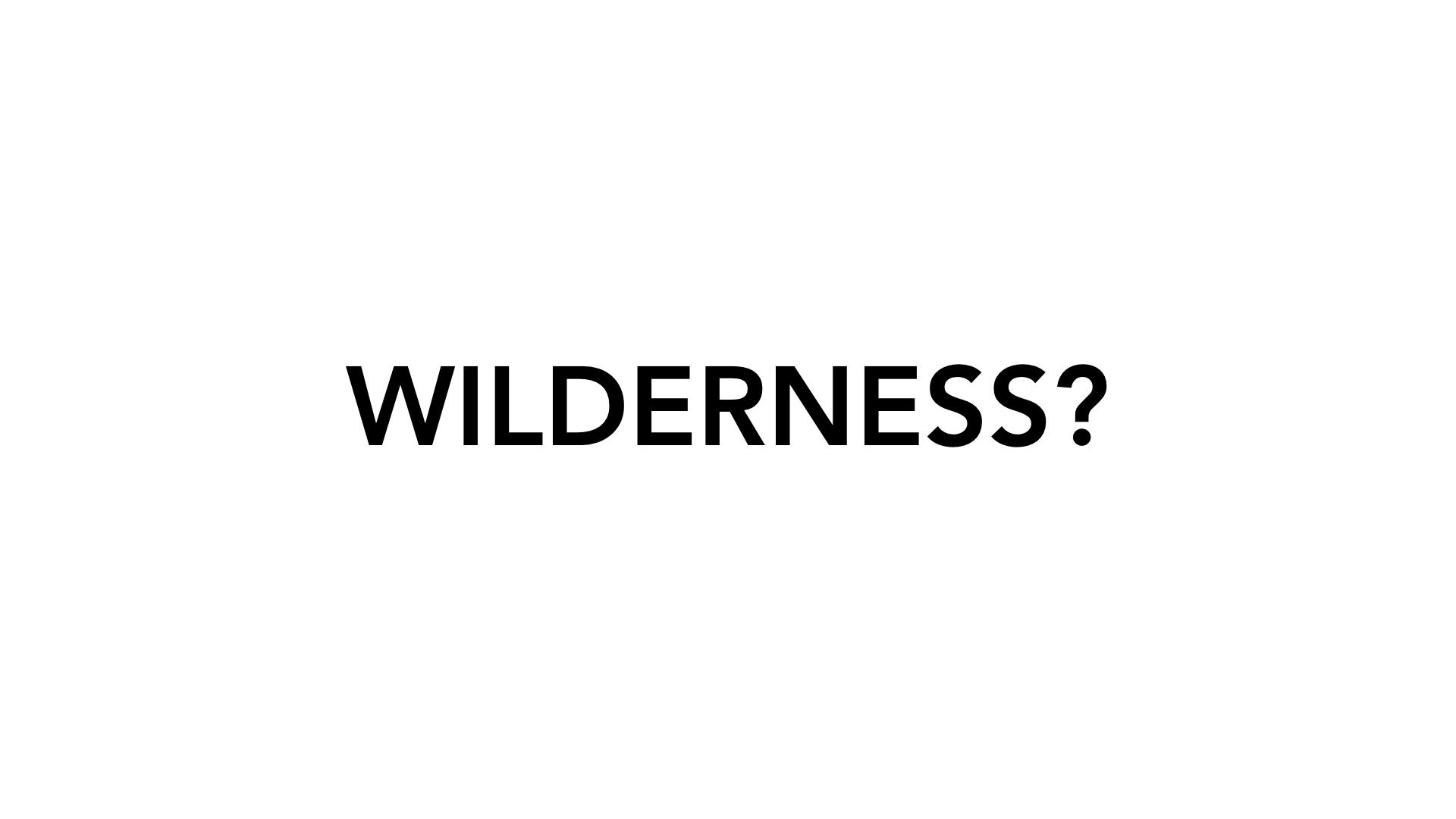 WILDERNESS-Maxlackner.003.jpeg