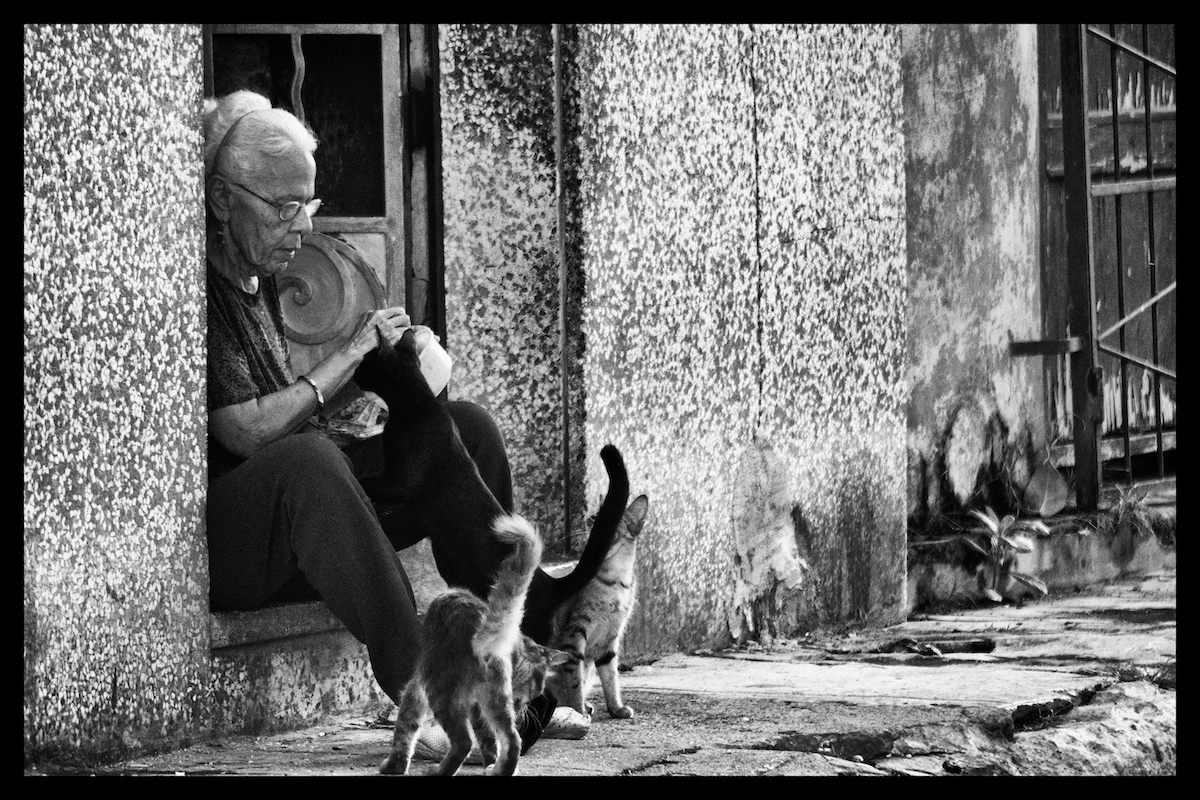 Cuban Cat Lady - Photography19 x 13