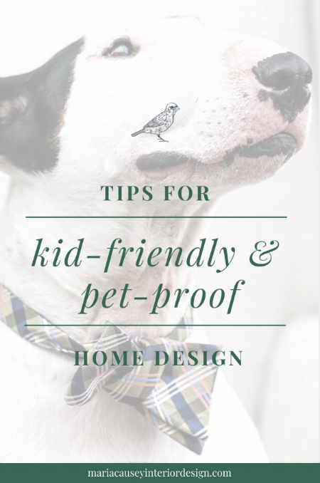 tips-for-kid-friendly-pet-proof-home-design.png