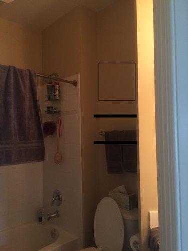maria-causey-interior-design-20105-va-design-project-before-girls-bathroom.jpg