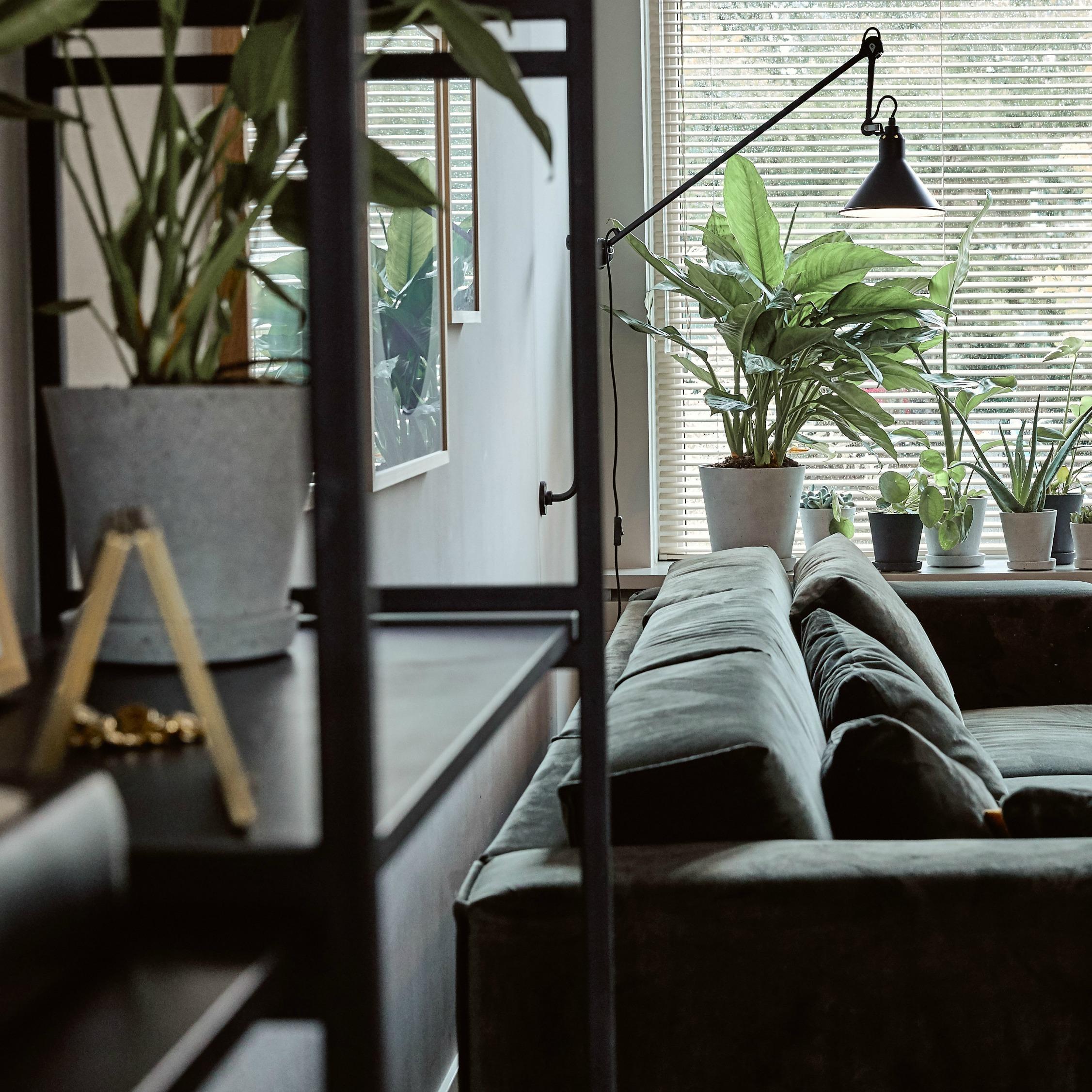 Amsterdam Apartment -